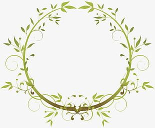 Green Leaves And Branches Intertwined PNG