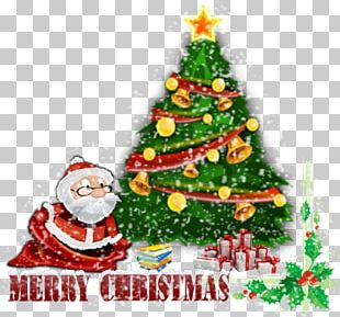Christmas Tree Christmas Ornament New Year PNG