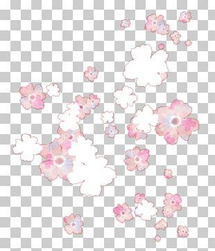 Petal Floral Design Flower Window Box Polyvore PNG