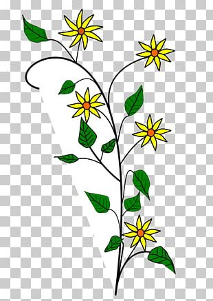 Flower Drawings PNG