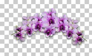 Wreath Flower Head PNG