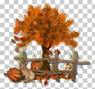 Autumn Tree Twig PNG