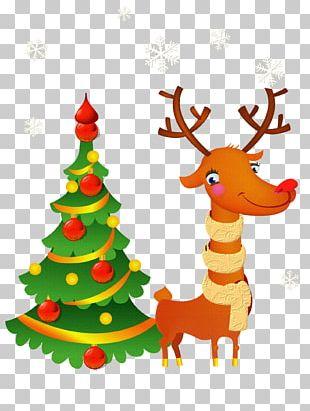 Santa Claus Christmas Day Christmas Tree Graphics Christmas Card PNG