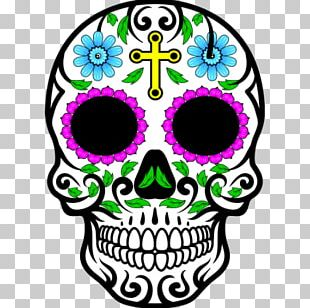 Calavera Mexican Cuisine Drawing Skull PNG