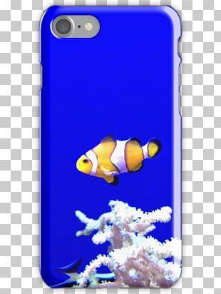 Coral Reef Fish Cobalt Blue Marine Biology PNG