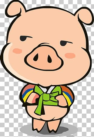 Domestic Pig Cartoon Illustration PNG