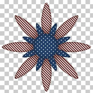 United States Independence Day Computer Icons PNG