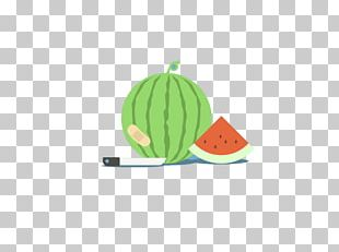 Watermelon Cartoon Flat Design Illustration PNG