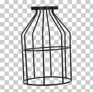 Cage PNG