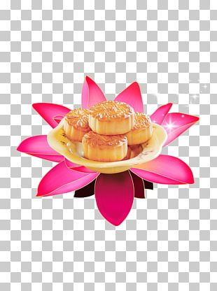 Mooncake Mid-Autumn Festival Happiness PNG