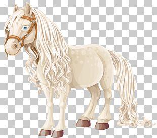 Arabian Horse American Miniature Horse Black Beauty Pony Cartoon PNG