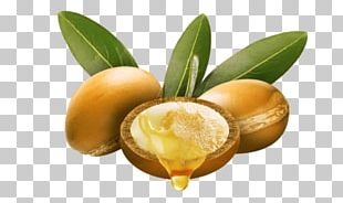 Lotion Argan Oil Hair Skin PNG