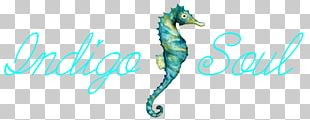 Seahorse Quotation Transparency And Translucency Hipster Pipefishes And Allies PNG
