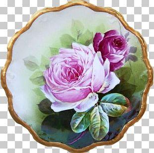 Cabbage Rose Garden Roses Floral Design Cut Flowers Vase PNG