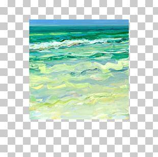 Shore Pacifica Wind Wave Ocean Sea PNG