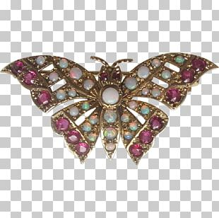 Butterfly Insect Jewellery Brooch Clothing Accessories PNG