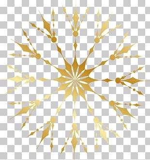 Flower Gold Luxury PNG
