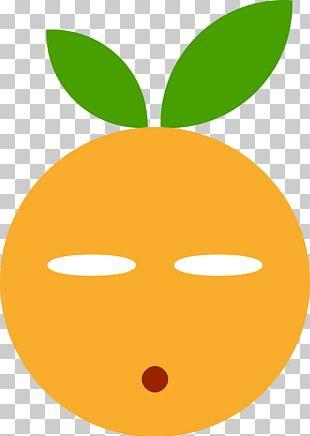 Smiley Computer Icons Emoticon Wink PNG