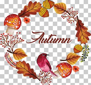 Autumn Watercolor Flower And Bird PNG