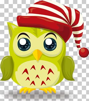 Owl Christmas Illustration PNG