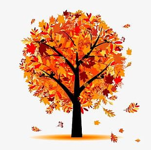 Autumn Leaves Tree PNG