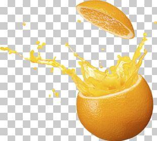 Orange Juice Drink Fruit PNG