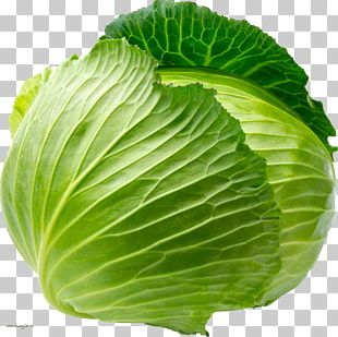 Cauliflower Red Cabbage White Cabbage Vegetable Savoy Cabbage PNG