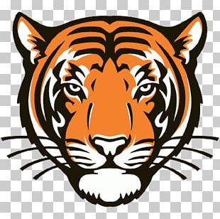 Princeton University Princeton Tigers Men's Basketball Princeton Tigers Football Princeton Tigers Men's Soccer Palmer Stadium PNG