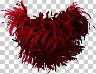 Feather Boa Bird Red PNG