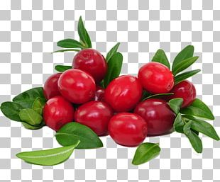 Juice Cranberry Food Dried Fruit PNG