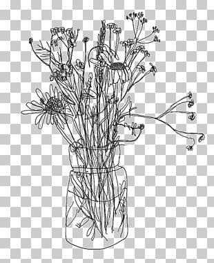 Contour Drawing Line Art Floral Design Sketch PNG