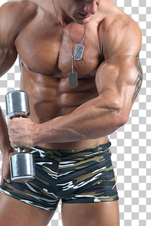 Bodybuilding Physical Exercise Steroid PNG