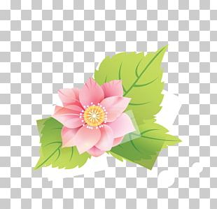 Cut Flowers Floral Design Garden Roses Peony PNG