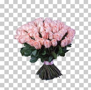 Garden Roses Cabbage Rose Moscow Cut Flowers PNG