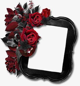 Floral Border Design Creative Floral Border Background Material PNG