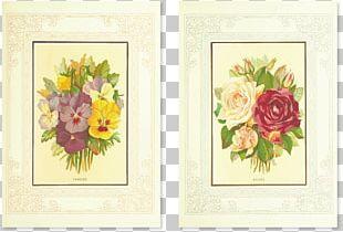 Floral Design Flower Drawing Illustration PNG