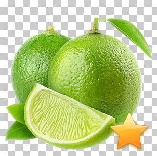 Juice Persian Lime Key Lime Lemon PNG