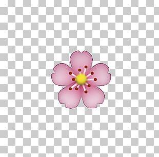 IPhone Emoji Flower Emoticon PNG