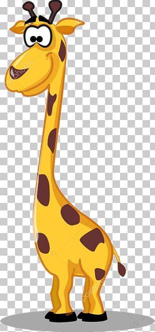 Giraffe Graphics Hippopotamus Illustration PNG