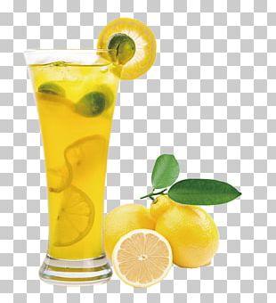 Juice Lemon Balm Extract Fruit PNG