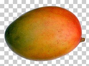 Mango Apple Fruit Icon PNG