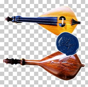String Instruments Violin Family Musical Instruments Harp PNG