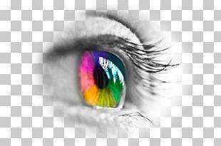Contact Lenses Eye Iris PNG