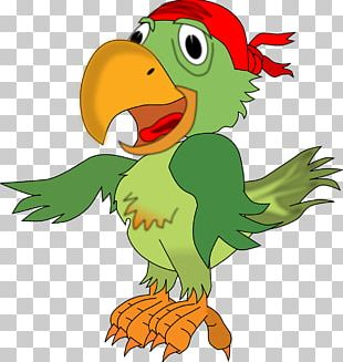 Pirate Parrot Piracy Free Content PNG
