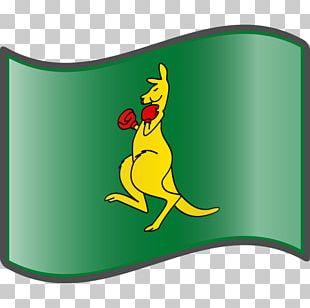 Tree Frog Bird Boxing Kangaroo Macropodidae Duck PNG