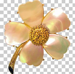Body Jewellery Brooch Clothing Accessories Gemstone PNG