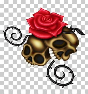 Rose Family Floral Design Cut Flowers Skull PNG