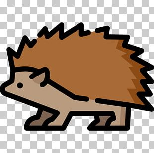 Hedgehog Illustration Computer Icons Euclidean PNG