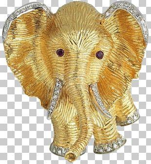 Indian Elephant African Elephant Curtiss C-46 Commando Elephantidae Figurine PNG