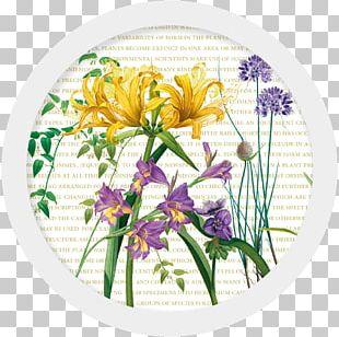 Floral Design Cut Flowers Flower Bouquet Graphic Arts PNG